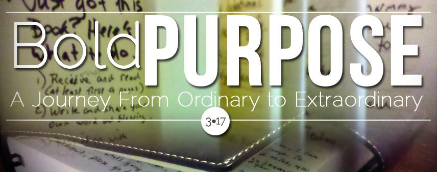 Bold Purpose Book